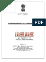 DIPR_Udaipur.pdf