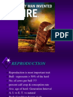 Beef Breeding and Repro.june 06