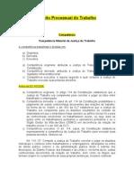 Direito Processual Do Trabalho 2
