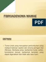 Fibroadenoma Mamae1