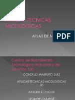 Atlas de Micosis