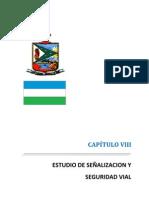 CAPITULO   VIII  Estudio de Señalización Vial
