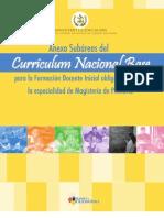 3. CNB_EBI_Anexo.pdf