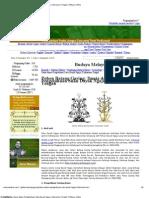Pohon Batang Garing_ Dunia Dalam Pengetahuan Suku Dayak Ngaju, Kalimantan Tengah _ Melayu Online
