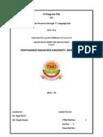 Lab File Format