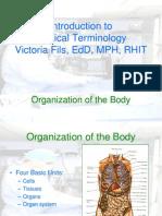 Org of Body