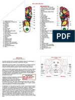 Harta-zonelor-reflexogene.pdf