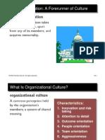Ch 3 - Culture