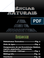 Trabalho de CN (Subsistemas Terrestres)