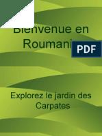 Presentation Roumanie
