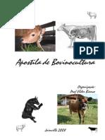 Bov - Apostila - Prof. Elder Bianco
