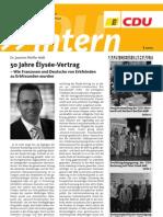 CDU intern Februar 2013