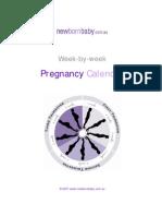 Pregnancy Calendar E Book