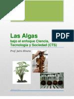 Las Algas, Enfoque CTS