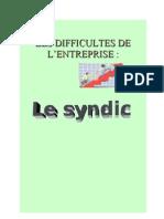c762714b8e6d8f5b177e78804a9c8503 Les Difficultes de l a Entrepris Le Syndic