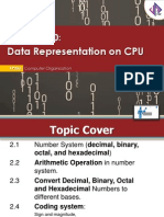 Computer Organization - Data Representation on CPU