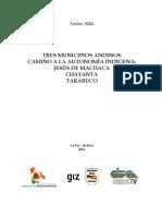 Tres Municipios Andinos Camino a La Autonomia Indigena