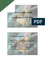 HEMIPTERA-HOMOPTERA.pdf