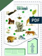 Wild Animals4