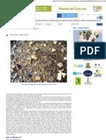 Arroces, Casa Juan _ lomejordelagastronomia.pdf