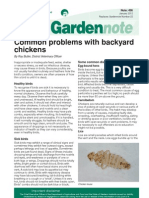 Diseases of Backyard Chickens