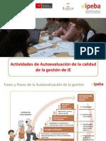 3. Actividades de Autoevaluación de la calidad de la gestión de IIEE