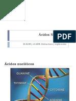 BIOMOLÉCULAS_acidos_nucleicos