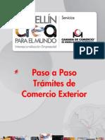Paso Paso Comercio Exterior Tramites 4353