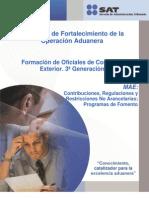 MAE_Contribuciones.pdf