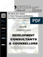 The Black Box Model; a Talent Management Model for Grooming Transformational Leaders