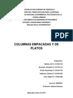 Unidad IV Columnas Empacadas de Platos. Operaciones Unitarias Teoria (1)