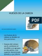 Presentacion Huesos de La Cabeza
