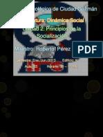 Principios de La Socializacion (1)
