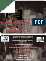 Movimiento Indigena.ppt