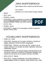 Voc. Invertebrados[1]