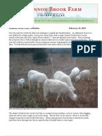 Shannon Brook Farm Newsletter 2-16-2013