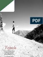 Artículo_Virtual Tools_Monográfico TEJUELO