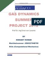 Gas Dynamics Summer Project 2012 Final