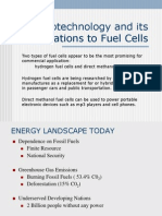 Nanotechnology and Fuel Cells
