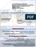 presentacion exposicion presupuesto (1)