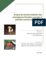 Analyse-commercialisation-champignons-potentiel-commercial.pdf