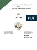 cam sql lab file.doc