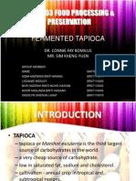 Fermented Tapioca