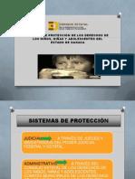 SISTEMA DE PROTECCIÓN DE LOS DERECHOS