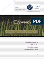 Espa_ Completo Proyecto