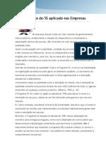 ANEXO04_A importância do 5S aplicado nas Empresas[1].revisão.18.03.09