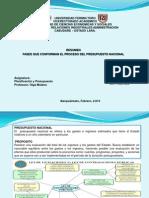 Brigida Garcia_Resumen_ Fases Proceso Presupuestario Nacional