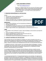 Ester - Resumos do Livro (pesquisa net-2012)