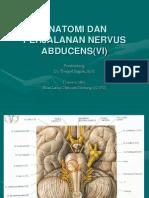 Anatomi Dan Perjalanan Nervus Abducens(Vi) - Dr. Tumpal, Sps