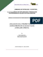 Evaluacion Prospectividad de Hidrocar Bloque Tucan-cord 2000 Edfn000266661